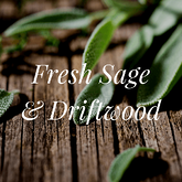 Fresh Sage and Driftwood fragrance oil